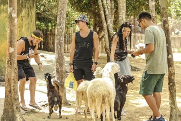 Vườn thú mở Safari Phú Quốc